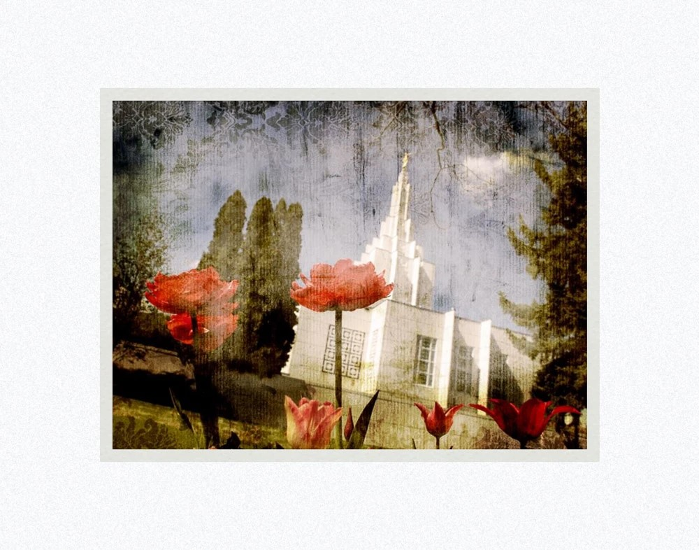 AF -11×14 Print -Idaho Falls Vintage Spring Flower  / 11x14 matted/Mandy Jane Williams<BR>アイダホ・フォール神殿と春の花 11×14 マットプリント